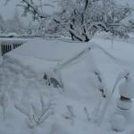Winter 2008 009