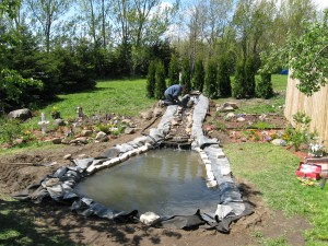 building of the pond0011