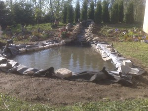 building of the pond0015