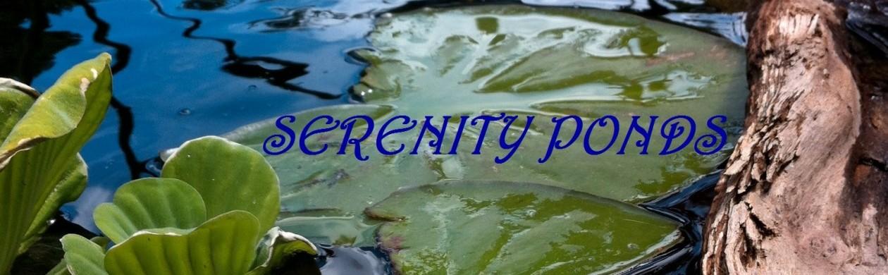 Serenity Ponds