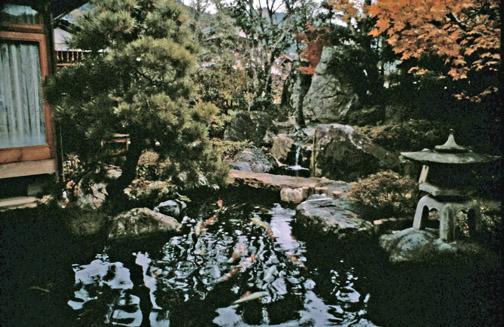 Pond construction serenity ponds barrie for Minimum depth for koi pond